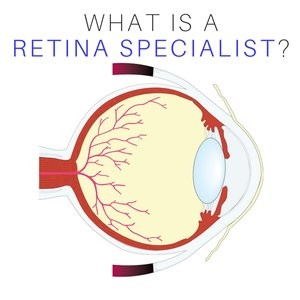 what is a retina specialist with eye
